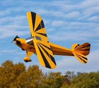 E-FLITE Clipped Wing Cub 1250mm BNF Basic